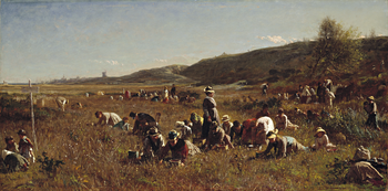 Thumbnail of 'The Cranberry Harvest, Island of Nantucket'